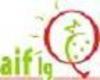 Logoaiflg_000